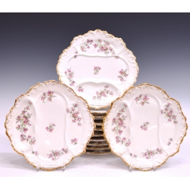 (11) LIMOGES FLORAL DECORATED ASPARAGUS PLATES